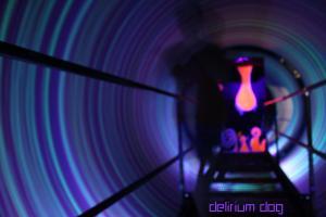 Delirium Dog in Tunnel Wallpaper